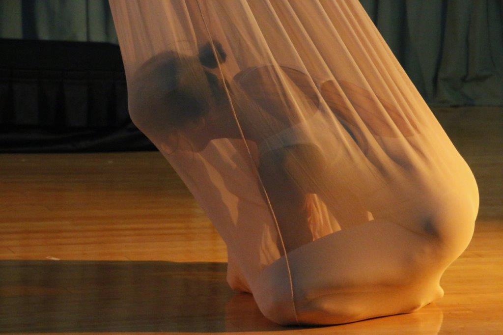 Image: Morphic Memory. Choreography: Elaine Colandrea Dancer: Sandra Capellaro Photo: Phyllis McCabe