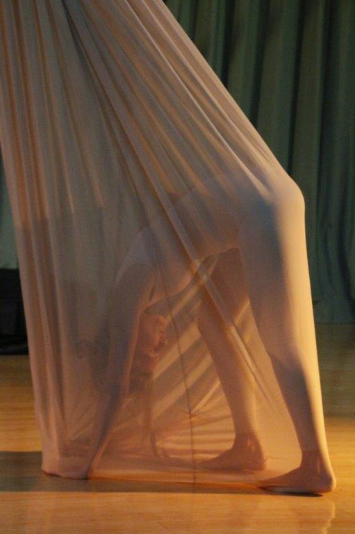 Image: Morphic Memory, Choreography: Elaine Colandrea, Dancer: Sandra Capellaro. Photo: Phyllis McCabe